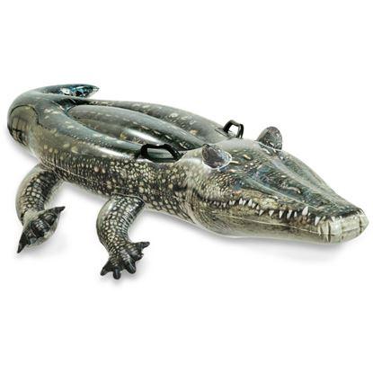 Obrázek Nafukovací aligátor