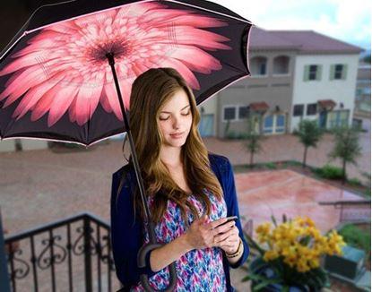 Obrázek Obrácený deštník - květina